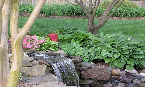 Landscape Maintenance Dayton MD